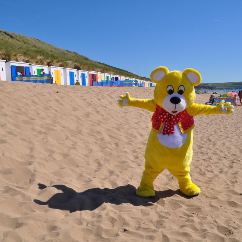 Woolly Bear enjoying himself on Woolacombe Beach