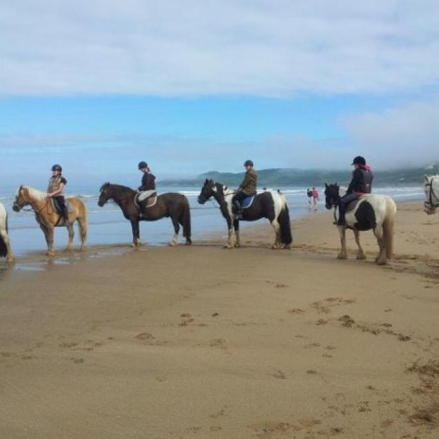 Woolacombe Sands Riding Stables
