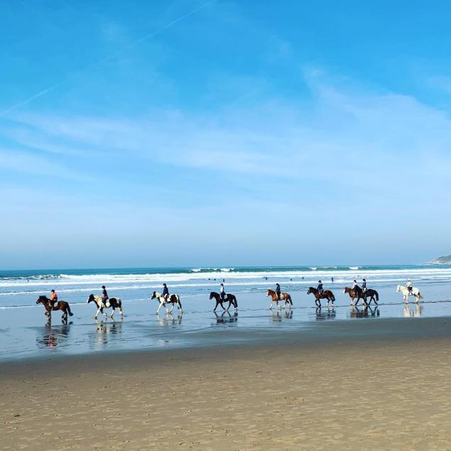Horse ride on Woolacombe beach